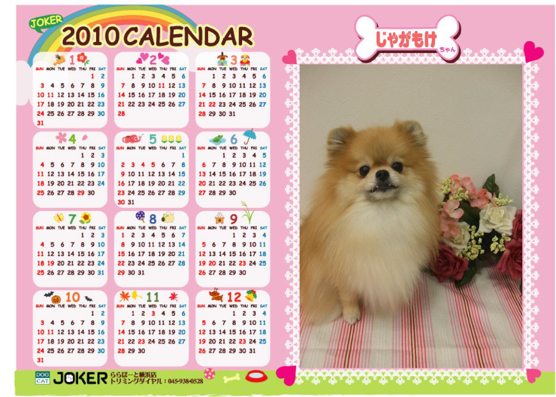 カレンダーじゃがもけ.jpg